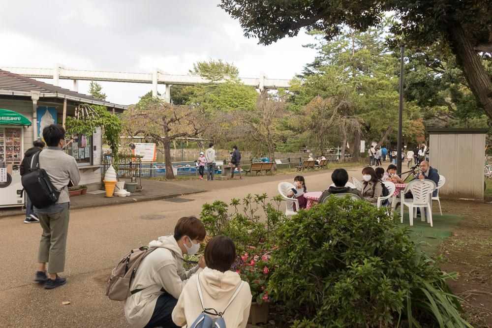 千葉公園の四季(2020/10/24)久しぶりのお天気に賑わい